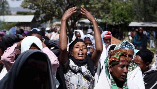 T-TPLF Harvest of Grief