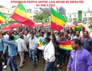 198 Ways to Fight the T-TPLF's State of Emergency in